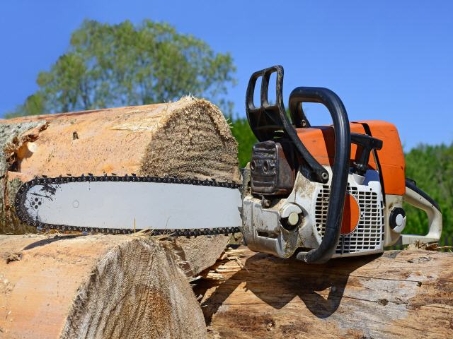 Klettergurt Für Baumfällung : Baumpflege sebastian körber baumfällung objektpflege winterdienst